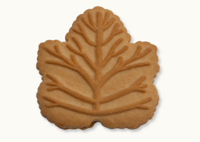 Let's Hear It for the Maple Revolutionaries