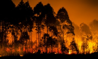 HR, benefits lessons from the 2016 Fort McMurray wildfire