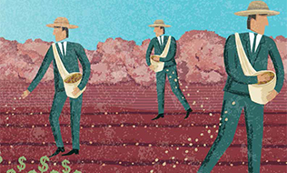 Navigating the complexities of investing in agriculture