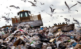 Risks and opportunities for investors as plastics lose popularity