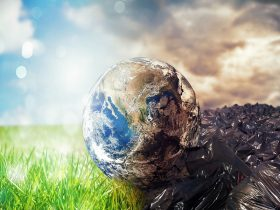 'The rules of the game are changing': DB pension plans and climate scenario risk analysis