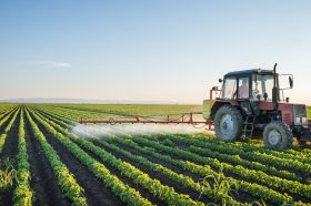 Caisse part of group investing $150M in Quebec-based agri-food company