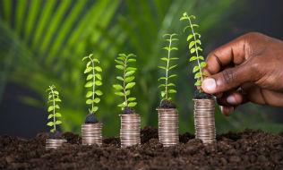 Benefits of integrating ESG include long-term alpha, minimized risk: survey